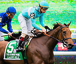 ELMONT, NY - OCTOBER 08: Lady Eli #5, ridden by Irad Ortiz Jr, after winning the 39th Running of The Flower Bowl, on Jockey Club Gold Cup Day at Belmont Park on October 8, 2016 in Elmont, New York. (Photo by Douglas DeFelice/Eclipse Sportswire/Getty Images)