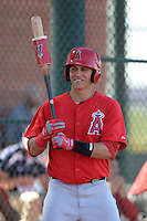 Los Angeles Angels second baseman Angel Rosa (8) waits on deck during an Instructional League game against the Milwaukee Brewers on October 11, 2013 at Tempe Diablo Stadium Complex in Tempe, Arizona.  (Mike Janes/Four Seam Images)