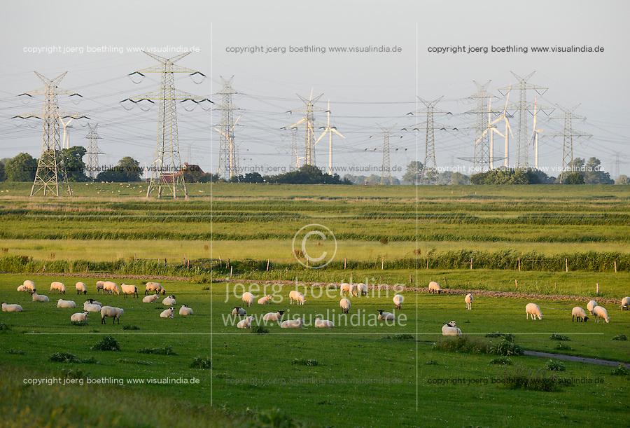 GERMANY Brunsbuettel, electric grid and wind turbines / DEUTSCHLAND Schleswig-Holstein, Brunsbuettel Stromleitungen, Windkraftanlagen und grasende Schafe am Deich