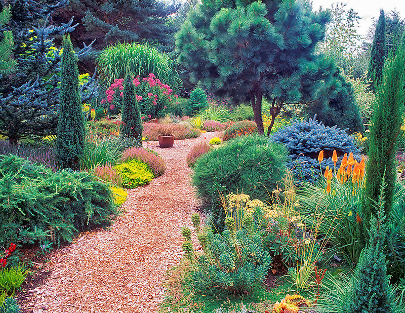 Path in garden. Northwest Garden Nursery. Eugene, Oregon.