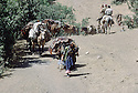 Iraq 1985 Kurds in Lolan on their way to exile    Irak 1985  Familles kurdes sur le chemin de l'exil