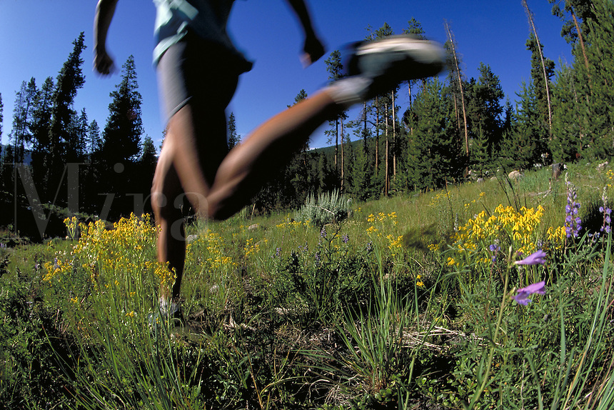 Woman, Scenic, Happiness, Active Lifestyle, Summer, Trail Running, Jogging, Sports, Exercise, Training, Fitness, Forest, Wilderness, Wildflowers, Blur, Speed, Legs, Feet. Melissa Terhorst (MR 615). Backcountry Colorado United States Rocky Mountains, Summi