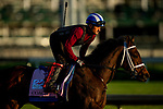 April 27, 2021: Coach gallops in preparation for the Kentucky Oaks at Churchill Downs in Louisville, Kentucky on April 27, 2021. EversEclipse Sportswire/CSM