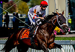 October 3, 2020: Factor This #7, ridden by Florent Geroux, wins the Dinner Party Stakes during Preakness Stakes Day at Pimlico Race Course in Baltimore, Maryland. John Voorhees/Eclipse Sportswire/CSM