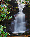 Henrytown Falls in Sevier County, Tennessee.
