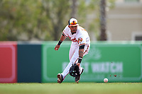 Baltimore Orioles second baseman Robert Andino (15) fields a ground ball during a Spring Training exhibition game against the Dominican Republic on March 7, 2017 at Ed Smith Stadium in Sarasota, Florida.  Baltimore defeated the Dominican Republic 5-4.  (Mike Janes/Four Seam Images)