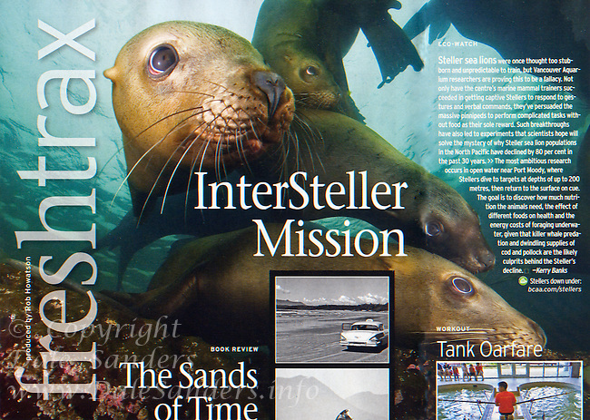 Tearsheet from Westworld Magazine, Spring 2012, of Stellers Sealions underwater in British Columbia, Canada.
