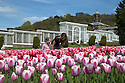 04/05/15<br /> <br /> Five-year-old Grace Cherry and her mum, Sophie, admire the tulips as people flock to enjoy the Bank Holiday Monday weather in the gardens of Chatsworth House, in the Derbyshire Peak District. <br /> <br /> All Rights Reserved - F Stop Press.  www.fstoppress.com. Tel: +44 (0)1335 418629 +44(0)7765 242650