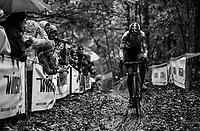 CX world champion Wout Van Aert (BEL/Crelan-Charles)<br /> <br /> Elite Men's race<br /> Superprestige Gavere / Belgium 2017