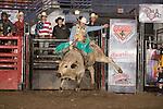 SEBRA - Beckley, WV - 1.16.2015 - Bulls & Action