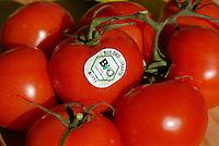 "Europa Deutschland DEU .Bio Label auf Tomaten -  Bio Oeko Lebensmittel Tomate Biotomate Gemuese xagndaz | .Europe Germany GER organic tomato with label  .  -  organic agriculture food .| [ copyright (c) Joerg Boethling / agenda , Veroeffentlichung nur gegen Honorar und Belegexemplar an / publication only with royalties and copy to:  agenda PG   Rothestr. 66   Germany D-22765 Hamburg   ph. ++49 40 391 907 14   e-mail: boethling@agenda-fototext.de   www.agenda-fototext.de   Bank: Hamburger Sparkasse  BLZ 200 505 50  Kto. 1281 120 178   IBAN: DE96 2005 0550 1281 1201 78   BIC: ""HASPDEHH"" ,  WEITERE MOTIVE ZU DIESEM THEMA SIND VORHANDEN!! MORE PICTURES ON THIS SUBJECT AVAILABLE!! ] [#0,26,121#]"