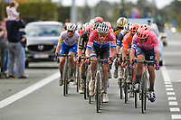 Mathieu Van der Poel (NED/Alpecin-Fenix) in the lead group<br /> <br /> 82nd Gent-Wevelgem in Flanders Fields 2020 (1.UWT)<br /> 1 day race from Ieper to Wevelgem (232km)<br /> <br /> ©kramon