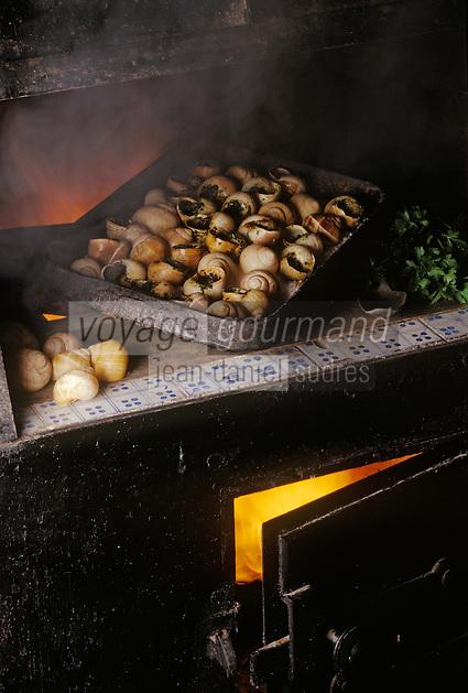 Europe/France/89/Bourgogne/Yonne/Chablis: Escargots de Bourgogne farcis