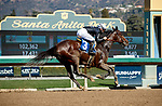 ARCADIA, CA FEBRUARY 6:  #3 Moonlight D'Oro, ridden by Flavien Prat, wins the Las Virgenes Stakes (Grade lll) on February 6, 2021 at Santa Anita Park in Arcadia, CA.  (Photo by Casey Phillips/EclipseSportswire/CSM)