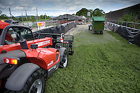 Compressing grass by rolling with a loader tractor in a silage clamp, Scotland.