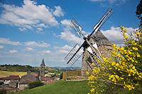 Europe/France/Midi-Pyrénées/81/Tarn/Lautrec: Le Moulin à vent