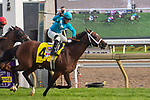 "September 19, 2020: Starship Jubilee #4, ridden by Justin Stein surges to win the Ricoh Woodbine Mile, a Breeders' Cup ""Win and You're In Race"" at Woodbine Racetrack in Toronto, Ontario, Canada Victor Biro/Eclipse Sportswire/CSM"
