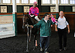 09 October 24: Jockey Harry Vega returns to the winner's circle in the paddock after riding Five Diamonds to victory in the Twixt Stakes on Frank J. DeFrancis Memorial Dash Stakes Day at Laurel Park in Laurel, Maryland.