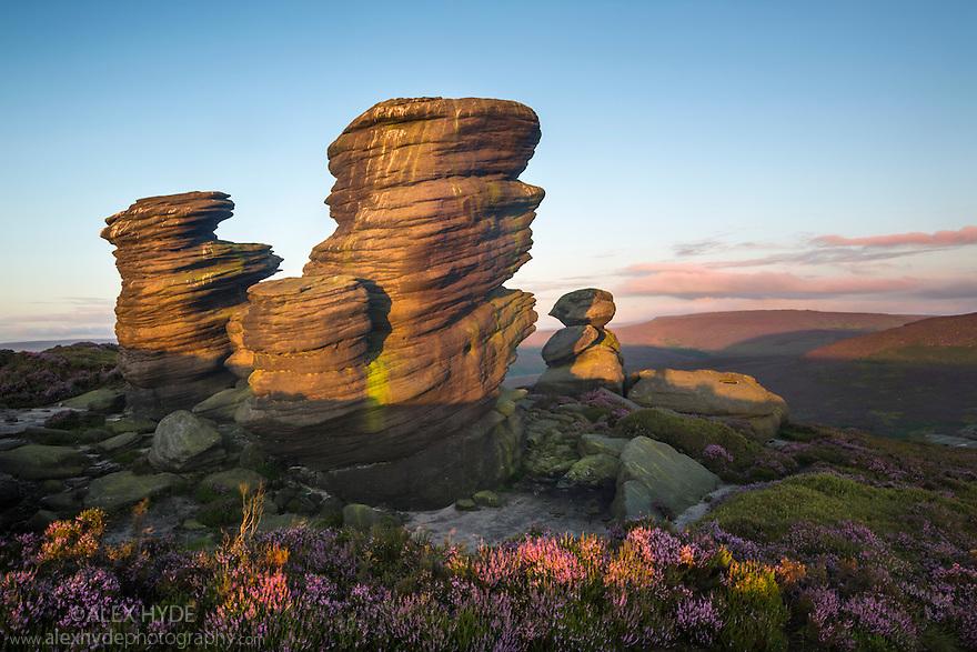 The Crow Stones at sunrise, Peak District National Park, Derbyshire, UK. August.