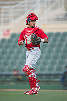 Lakewood BlueClaws catcher Edgar Cabral (30) on defense against the Kannapolis Intimidators at Kannapolis Intimidators Stadium on April 6, 2017 in Kannapolis, North Carolina.  The BlueClaws defeated the Intimidators 7-5.  (Brian Westerholt/Four Seam Images)