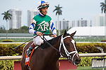 March 28, 2015: Materiality with John Velazquez up outduels Upstart to win the Florida Derby (G1) at Gulfstream Park, Hallandale Beach (FL). Arron Haggart/ESW/CSM