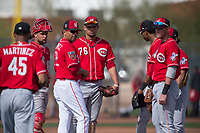 Cincinnati Reds manager Ray Martinez (22) visits with his team during a pitching change in a Minor League Spring Training game against the Los Angeles Angels at the Cincinnati Reds Training Complex on March 15, 2018 in Goodyear, Arizona. (Zachary Lucy/Four Seam Images)