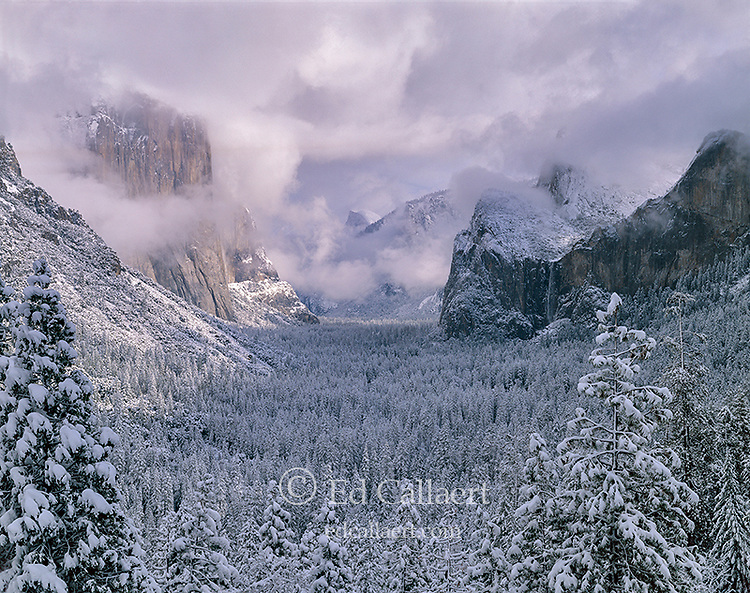 Clearing Storm, Yosemite Valley, Yosemite National Park, California