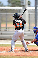 Miami Marlins catcher Joel Jimenez (58) during a minor league spring training game against the New York Mets on March 28, 2014 at the Roger Dean Stadium Complex in Jupiter, Florida.  (Mike Janes/Four Seam Images)