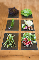 Europe/France/Bretagne/56/Morbihan/La Gacilly: Légumes bio au Restaurant La Grée des Landes, Eco-Hôtel Spa Yves Rocher