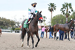 March 20, 2021: Hot Rod Charlie wins the  Louisiana Derby at Fair Grounds Race Course in New Orleans, Louisiana. Parker Waters/Eclipse Sportswire/CSM
