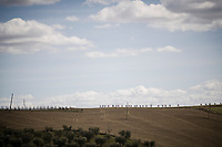 Tuscany chaingang<br /> <br /> 13th Strade Bianche 2019 (1.UWT)<br /> One day race from Siena to Siena (184km)<br /> <br /> ©kramon