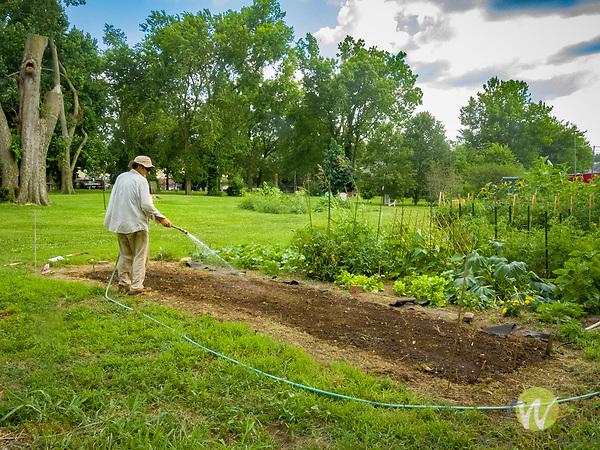 Lexington Community vegetable garden. Tolston Wild watering.