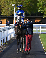 Winner of The PKF Francis Clark British EBF Novice Stakes (Plus 10) (Div 1) Bellocio ridden by David Egan and trained by David Menuisier  is led into the Winners enclosure during Horse Racing at Salisbury Racecourse on 1st October 2020