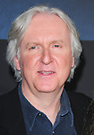 James Cameron at The Twentieth Century Fox World Premiere of Avatar held at The Grauman's Chinese Theatre in Hollywood, California on December 16,2009                                                                   Copyright 2009 DVS / RockinExposures