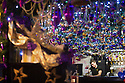 """30/11/15<br /> <br /> Barman, Brandon Christie, 20, pulls a pint in the purple and gold bar area.<br /> <br /> It has taken a team of five, two weeks to put up this stunning display of Christmas decorations in what is believed to be one of Britain's most festive pubs. The race was on to put up the 7,500 baubles and 27,000 fairy lights, before guests arrived for the pub's first Christmas parties held last night. <br /> <br /> Each of the five rooms at the Hanging Gate at Chapel-en-le-Frith in the Derbyshire Peak District has a different theme or colour. This year the main restaurant is the Indoor Igloo, the bar area is purple and gold and there's the Candy Cain room upstairs in the pub near Buxton. There's also has another 10,000 lights on the outside of the building. <br /> <br /> """"We've had to replace a few thousand of the LED lights this year, I buy them in huge lengths so it's cost lots  to get everything ready"""" said landlord Mark Thomas.<br /> <br /> All Rights Reserved: F Stop Press Ltd. +44(0)1335 418365   www.fstoppress.com."""