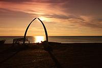 Jaw bones of a Bowhead Whale, Balaena mysticetus, form the archway under the midnight sun. Barrow, Alaska, Arctic