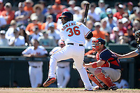 Baltimore Orioles infielder Alex Gonzalez (36) at bat in front of catcher Ryan Lavarnway (20) during a spring training game against the Boston Red Sox on March 8, 2014 at Ed Smith Stadium in Sarasota, Florida.  Baltimore defeated Boston 7-3.  (Mike Janes/Four Seam Images)