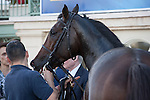 Summer Front after winning the Ft Lauderdale Stakes (G2T) at Gulfstream Park, Hallandale Beach, Florida 01-01-2014