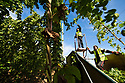 04/09/19<br />