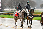February 28, 2021: Savedbyanangel #1 , ridden by Joseph Talamo wins the Downthedustyroad Breeders Stakes for trainer John Henry Prather, Jr. at Oaklawn Park in Hot Springs,  Arkansas.  Ted McClenning/Eclipse Sportswire/CSM