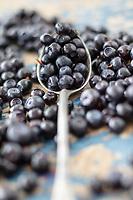 Gastronomie générale / Diététique / Myrtille  Bio // General gastronomy / Diet / Organic blueberry