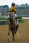 13 June 2009: Macho Again with Robbie Albardado up wins the 28th running of the Grade 1 Stephen Foster Handicap at Churchill Downs in Louisville, Kentucky.