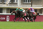 09-11-11 : Match towards Sarafina (1) and Hiruno d'Amour (2) in the last 110 yards