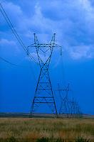 Utility poles<br />