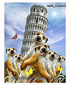 Howard, REALISTIC ANIMALS, REALISTISCHE TIERE, ANIMALES REALISTICOS, selfies, paintings+++++,GBHRPROV244,#a#, EVERYDAY