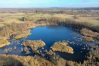 Pantener Moorweiher, Naturschutzgebiet Pantener Moorweiher und Umgebung, Feuchtgebiet, Kreis Herzogtum Lauenburg, Schleswig-Holstein, Deutschland