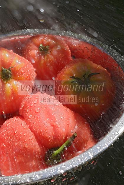 Europe/France/Midi-Pyrénées/46/Lot/Env de Cajarc: Tomates de Culture Biologique de la vallée du Lot