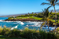 Sunlit golf greens across the ocean, framed by fountain grass and palm trees, Golf Course at Mauna Kea, Mauna Kea Beach Hotel, Big Island.