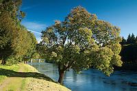 The River Tay and Dunkeld Bridge, Dunkeld Perthshire
