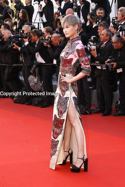 Li Yuchun sur le tapis rouge pour la projection du film en competition OKJA lors du soixante-dixiËme (70Ëme) Festival du Film ‡ Cannes, Palais des Festivals et des Congres, Cannes, Sud de la France, vendredi 19 mai 2017.